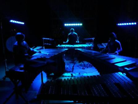 We weren't able to use our lights in the performance of Rain Tree at PASIC, so here's a pic from one of our rehearsals!